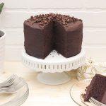Paleo Chocolate Cake with Dark Chocolate Ganache Frosting {gluten-free, dairy-free}