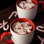 20 Healthy Holiday Recipes to Keep You On Track This Season