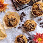 Grain-Free Pumpkin Chocolate Chunk Muffins