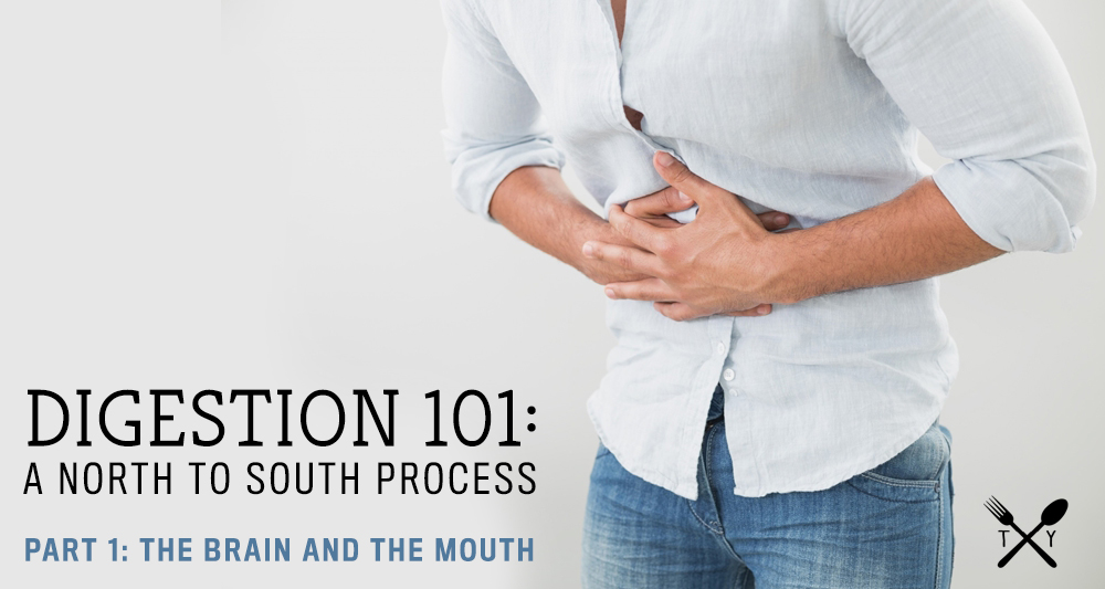 Digestion 101 A North To South Process Part 1 The Brain And The