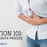 Digestion 101: A North to South Process // Part 2: The Stomach