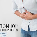 Digestion 101: A North to South Process // Part 3: The Accessory Organs – Pancreas, Gallbladder and Liver